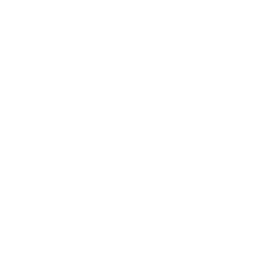 North Face Logo White